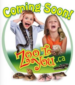 zooToYou.ca
